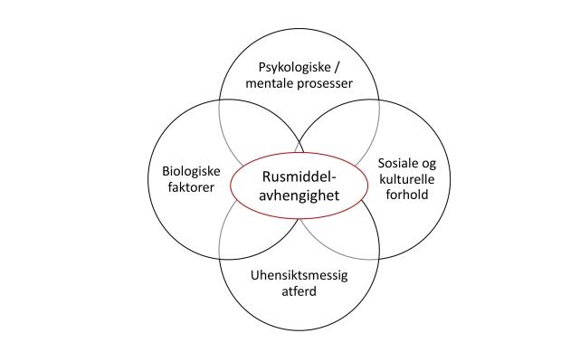 Illustrasjoner Turid Wangensteen